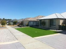Prestige 38mm fake grass in Baldivis, Rockingham WA