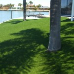 Canals in Mandurah, fake tuf lawn