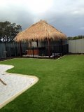 Prestige 38mm artificial lawn for Luke Cook and his family in South Yunderup, Mandurah WA