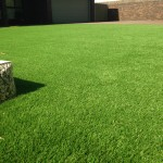 Mr Mrs Alexander, Leybourne Drive, Halls Head in Mandurah, WA Prestige 38mm Artificial Lawn and synthetic grass
