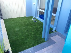 synthetic lawn, artificial lawn and fake grass turf 2